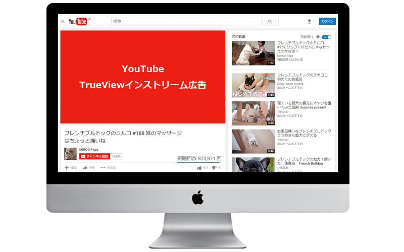 YouTube TrueViewインストリーム広告